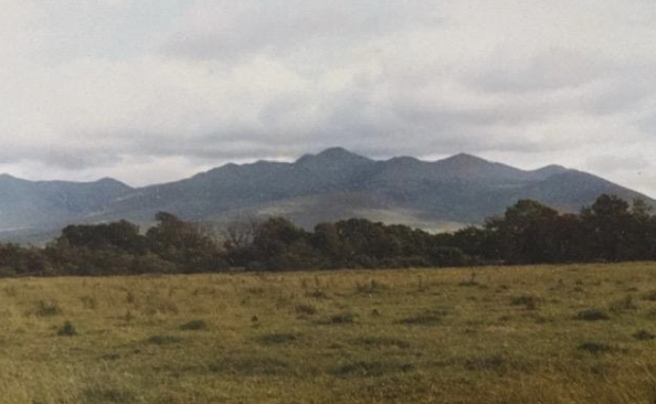 MacGillycuddy Reeks from the homestead in Dungeel (Ann Robinson)